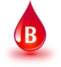 Blutgruppe B